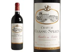CHÂTEAU CHASSE-SPLEEN 1995