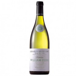 William Fèvre Chablis Grand Cru Vaudésir 2013